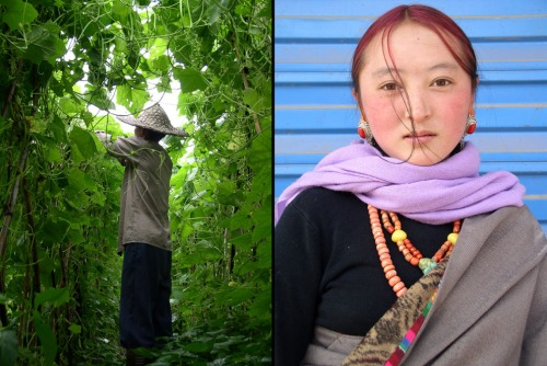 Left: Fujian farmer lost in a tangle of squash vines. Right: Hip Tibetan youth, Sichuan.