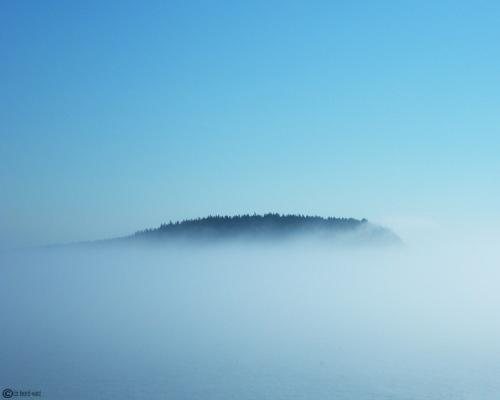 Fogged Island