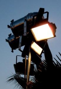 editor spotlight alvimann