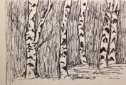 Birch III